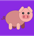pig in cartoon flat style vector image vector image