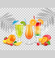 sweet juices summer cocktails fruits and berries vector image vector image