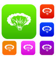 atomical explosion set color collection vector image vector image