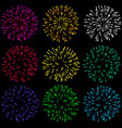 brightly colorful fireworks and salute- isolated vector image vector image