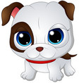 cute baby bulldog vector image