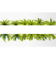 palm leaves banner vector image