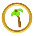 Palm tree with coconuts icon vector image vector image