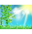 Abstract green natural background vector image