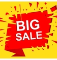 Big sale poster with BIG SALE text Advertising vector image