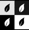 leaf icon isolated on black white and transparent vector image