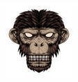 monkey head dot vector image