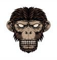 monkey head dot vector image vector image