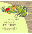organic factory shop with only natural products vector image vector image