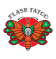 traditional butterfly flash tattoo vector image vector image