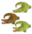 aggressive crocodiles and crocodile with a bruise vector image