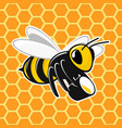 bee on honeycomb background vector image vector image