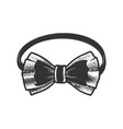 bow tie sketch vector image