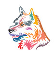colorful decorative portrait of dog norwich vector image vector image