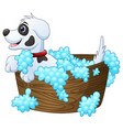 cute little dog taking a bath on a white backgroun vector image vector image