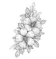 hand drawn floral bunch with hibiscus and leaves vector image vector image