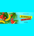 summer sale bannerbeautiful background with vector image
