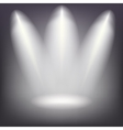 Beams from the spotlights vector image