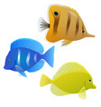 set of tropical fish element for your design vector image