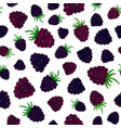 blueberry background painted pattern vector image vector image
