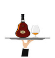bottle of cognac and glass on tray vector image vector image