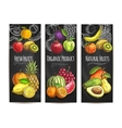 Fresh natural fruits products sketch posters vector image vector image
