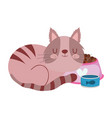 pet sleeping cat with bowl food and fish isolated vector image vector image