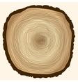 tree rings cut stump vector image