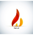 Bright fire concept design vector image