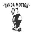 panda motion vector image vector image