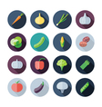 Flat Design Icons For Vegetables vector image