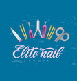 hand lettering elite nail studio with tools logo vector image vector image