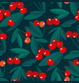 red summer cherry on black background vector image vector image