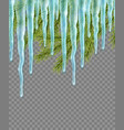 seamless border with realistic firtree and icicles vector image