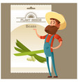 beans seed pack vector image