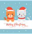 cute kittens flat design merry christmas poster vector image