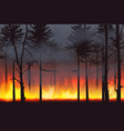 realistic silhouette wildfire forest fire disaster vector image vector image