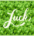 saint patrick day with the word luck vector image