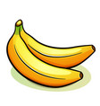 two yellow bananas design vector image