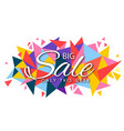 banner big sale only this week polygon imag vector image