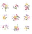 flower bouquet set floral frame design flourish vector image vector image