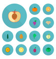 set of icons flat style symbols with onio vector image vector image