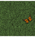 Stylized grass and butterfly vector image vector image