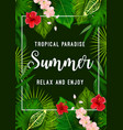 summer tropical paradise card with palm leaf frame vector image vector image