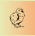 hand-drawn chicken chick engraving stencil vector image