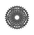 bicycle monochrome sprocket vector image vector image