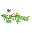 goldfinch family on tree branch flat vector image vector image