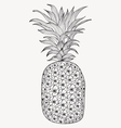 Hand-drawn pineapple on white background vector image vector image