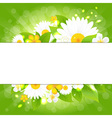 Flowers With Leaves Bokeh And Sunburst vector image