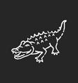alligator chalk white icon on black background vector image